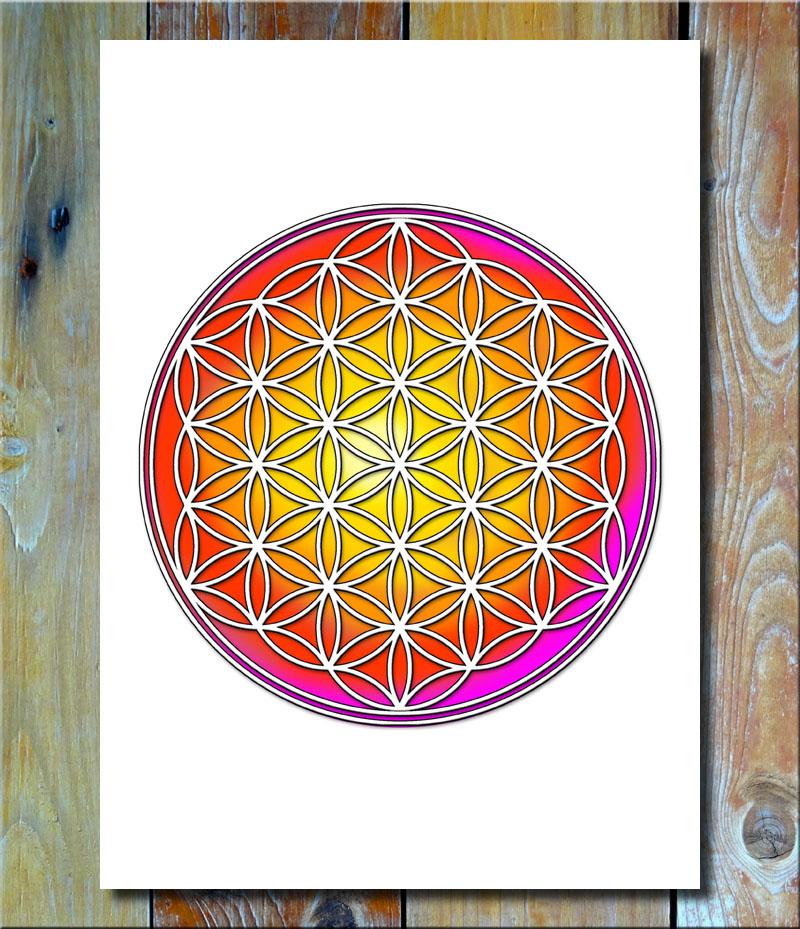 Blume des Lebens Multicolor