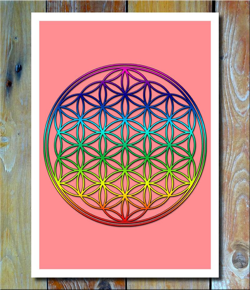 Blume des Lebens Rainbow