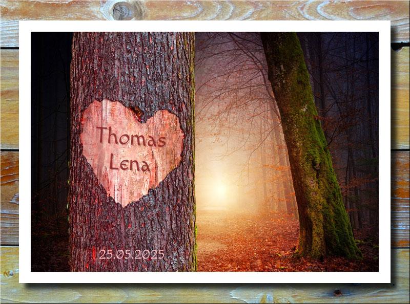 Liebeherz auf Baum im Sonnenwald